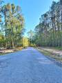 210 Southern Charm Road - Photo 17