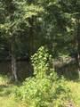 0 Black Water Trail - Photo 1