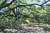 1356 Live Oak Drive - Photo 1