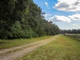 8 Breakaway Trail - Photo 8