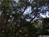 3310 Seabrook Island Road - Photo 3