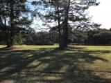 8244 Seaside Oaks Lane - Photo 5