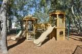 1255 Adela Hills Drive - Photo 50