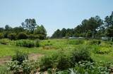 121 Plantation Drive - Photo 15