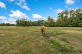 205 Odd Farm Lane - Photo 4