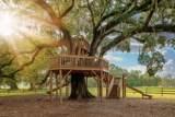 221 Oak View Way - Photo 8