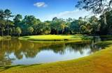 11 Stono Links Drive - Photo 1