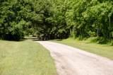 3983 Berberis Lane - Photo 48