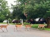 331 Oak Point Landing Drive - Photo 60