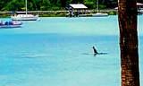 22 Mariners Cay Drive - Photo 18
