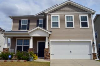1291 Wild Goose Trail, Summerville, SC 29483 (#17008821) :: The Cassina Group