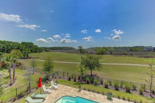 262 Furman Farm Place, Charleston, SC 29492 (#17010927) :: The Cassina Group
