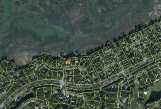 43 Burroughs Hall, Kiawah Island, SC 29455 (#17010945) :: The Cassina Group