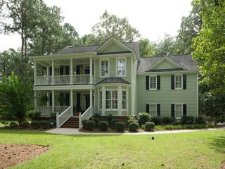 3037 Pignatelli Crescent, Mount Pleasant, SC 29466 (#17011440) :: The Cassina Group