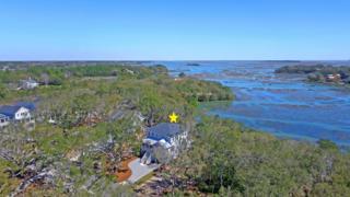 1145 Hills Plantation Drive, Charleston, SC 29412 (#17014855) :: The Cassina Group