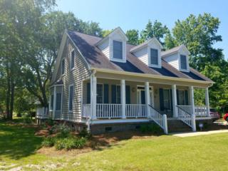 955 Pine Hollow Road, Mount Pleasant, SC 29464 (#17014945) :: The Cassina Group