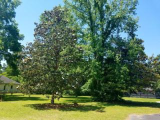 955 Lot 9 Pine Hollow Road, Mount Pleasant, SC 29464 (#17014946) :: The Cassina Group