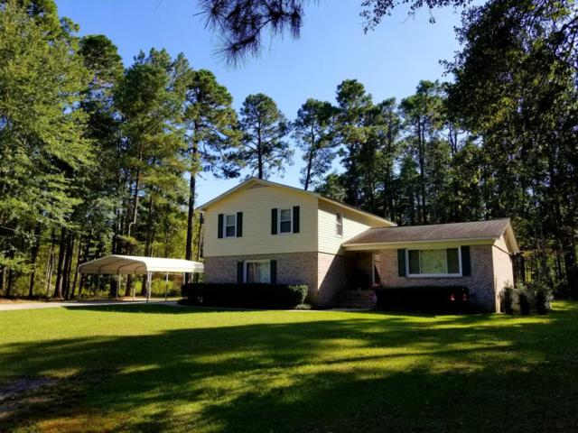 335 Waverly Road, Walterboro, SC 29488 (#17026887) :: The Cassina Group