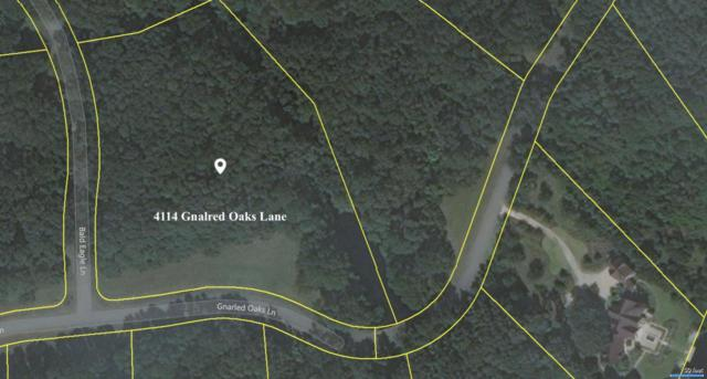 4114 Gnarled Oaks Lane, Johns Island, SC 29455 (#17031414) :: The Cassina Group