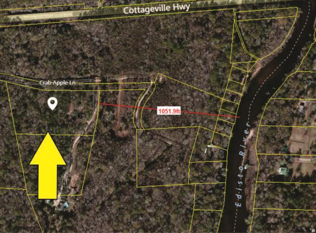 394 Crab Apple Lane, Ridgeville, SC 29472 (#18001327) :: The Cassina Group