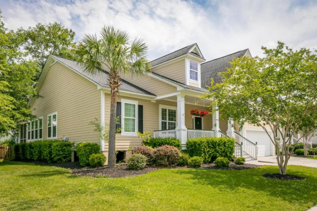 3429 Toomer Kiln Circle, Mount Pleasant, SC 29466 (#18004355) :: The Cassina Group