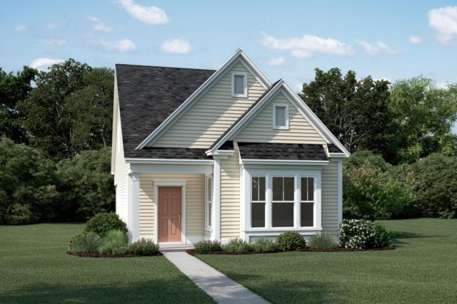 169 Rowans Creek Drive, Charleston, SC 29492 (#18004856) :: The Cassina Group