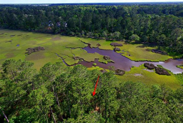 0 Duck Club Road, Ravenel, SC 29470 (#18009214) :: The Cassina Group