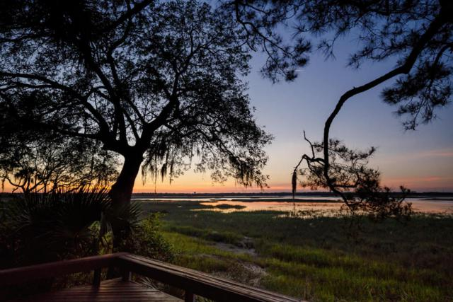 165 Marsh Hawk Lane, Kiawah Island, SC 29455 (#18012870) :: The Cassina Group