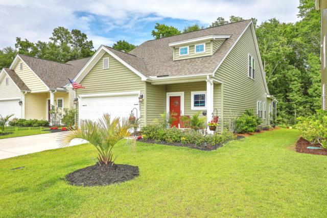 1537 Oldenburg Drive, Mount Pleasant, SC 29429 (#18014693) :: The Cassina Group