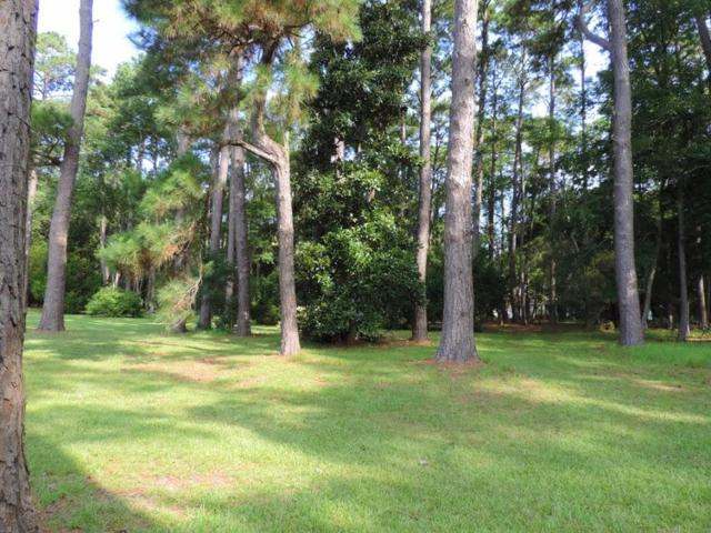 8671 Peters Point Road, Edisto Island, SC 29438 (#18014809) :: The Cassina Group