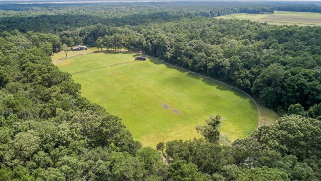 4379 River Road, Johns Island, SC 29455 (#18022411) :: The Cassina Group