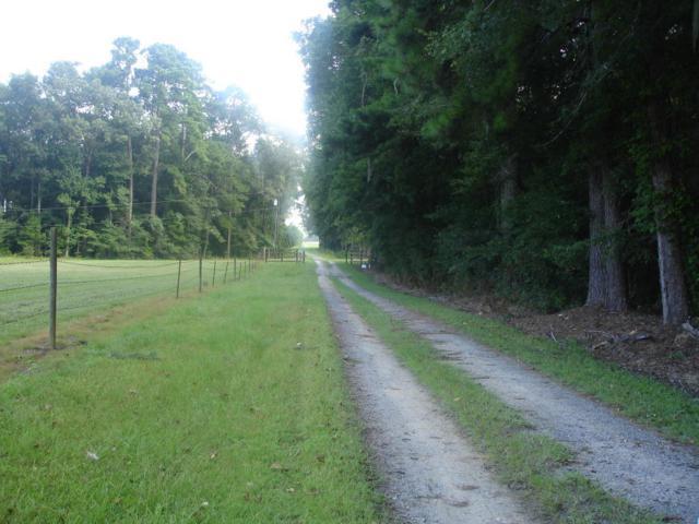 7295 Greenwood Rd., Adams Run, SC 29426 (#18022820) :: The Cassina Group