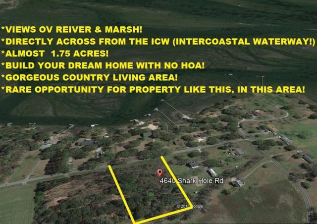 4640 Shark Hole Road, Meggett, SC 29449 (#18027734) :: The Cassina Group