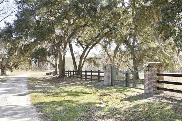 5 Oaks Road Lot  5, Ravenel, SC 29470 (#18029009) :: The Cassina Group