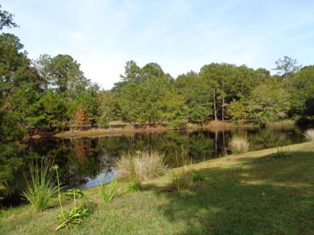 8 Awendaw Lakes Boulevard, Awendaw, SC 29429 (#18030267) :: The Cassina Group