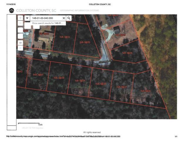 0 Carolina Circle Lot 24, Walterboro, SC 29488 (#18030853) :: The Cassina Group