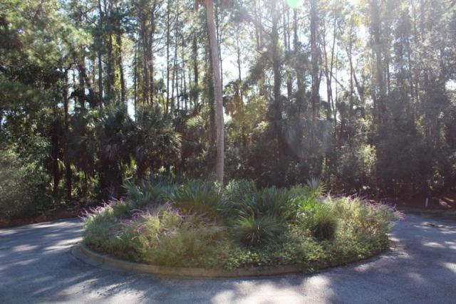203 Horned Grebe Court, Kiawah Island, SC 29455 (#18031147) :: The Cassina Group