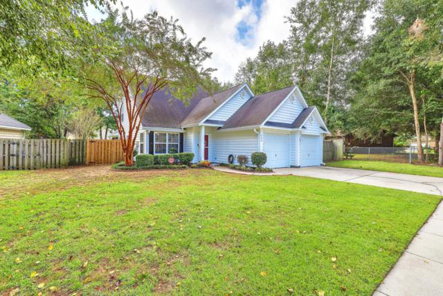 559 Cecilia Cove Drive, Charleston, SC 29412 (#18031368) :: The Cassina Group