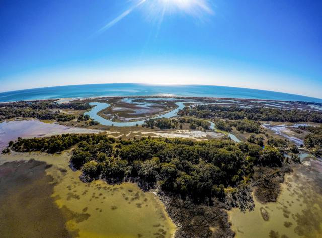 1 Savage Island, Edisto Island, SC 29438 (#19000266) :: The Cassina Group