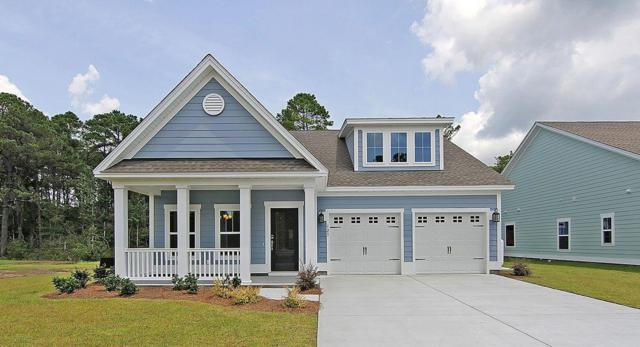 3041 Rice Field Lane, Mount Pleasant, SC 29466 (#19001573) :: The Cassina Group