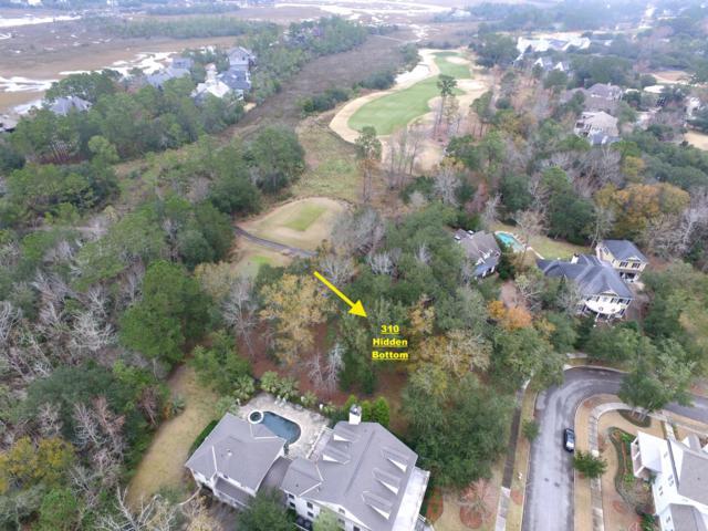 310 Hidden Bottom Lane, Charleston, SC 29492 (#19001719) :: The Cassina Group