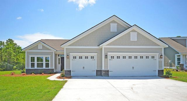 3057 Rice Field Lane, Mount Pleasant, SC 29466 (#19001948) :: The Cassina Group