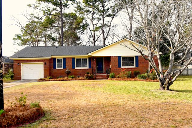 1174 Main Canal Drive, Mount Pleasant, SC 29464 (#19002071) :: The Cassina Group
