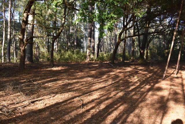26 Grande Oaks Way, Beaufort, SC 29907 (#19004163) :: Realty One Group Coastal