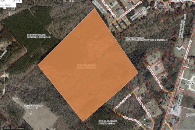 1 Windchime Lane, Orangeburg, SC 29115 (#19006582) :: The Cassina Group