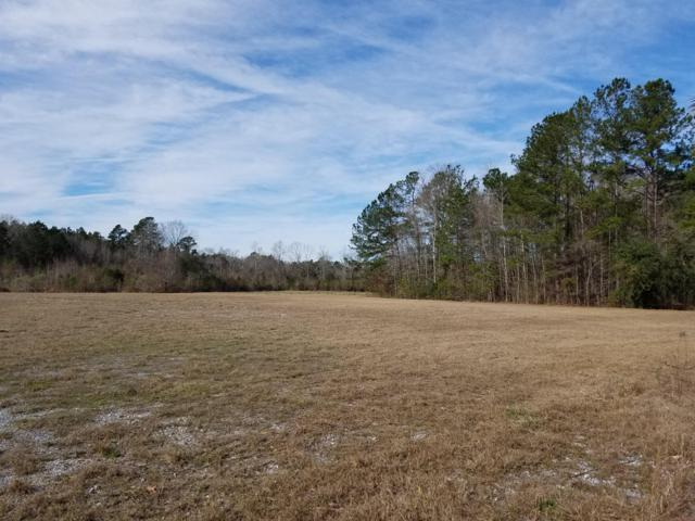 0 County Rd S-18-182, Ridgeville, SC 29472 (#19006765) :: The Cassina Group