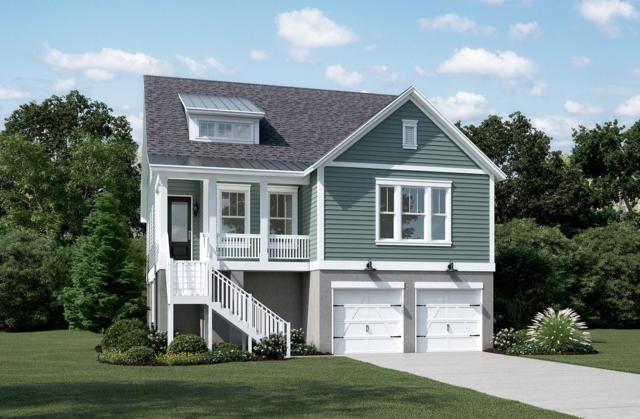 513 Amalie Farms Drive, Charleston, SC 29492 (#19007138) :: The Cassina Group