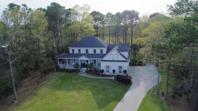 2107 Sewee Indian Court, Mount Pleasant, SC 29466 (#19008060) :: The Cassina Group