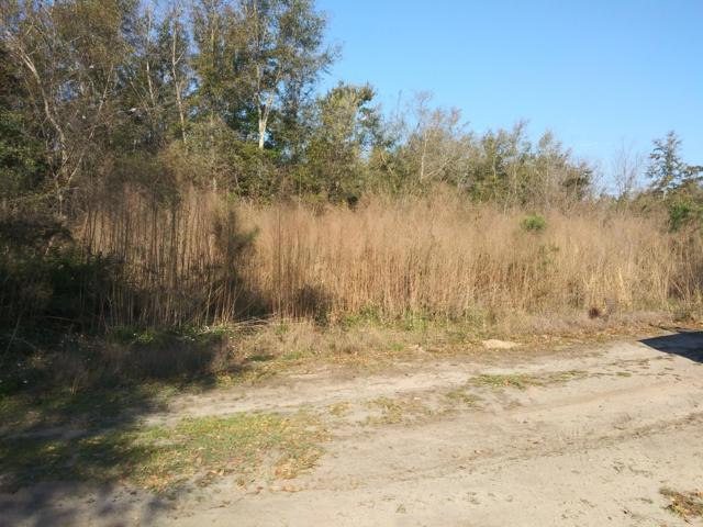 6041 Elizabeth Washington Lane, Ravenel, SC 29470 (#19008223) :: Realty ONE Group Coastal
