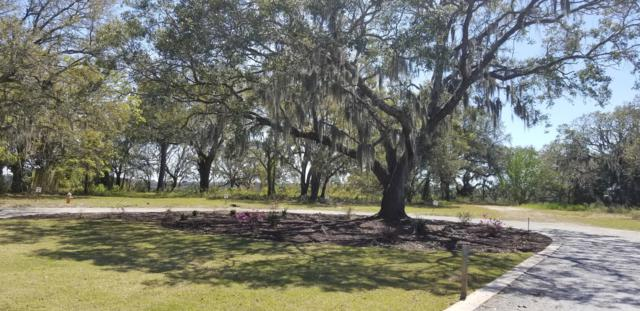 1391 Harbor View Road, Charleston, SC 29412 (#19009884) :: The Cassina Group
